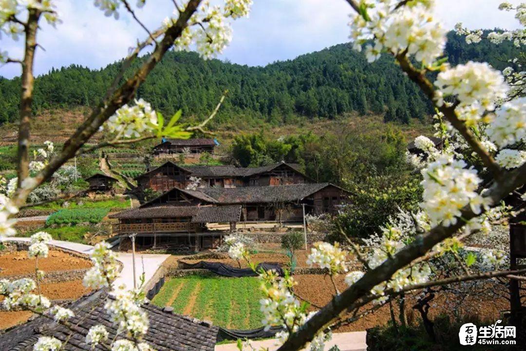 【喜报】第二批重庆历史文化名村发布啦!石柱只有这个村上榜!