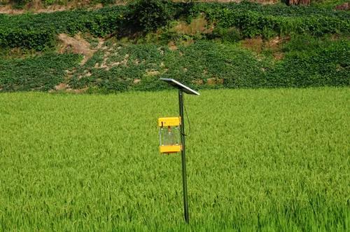 """坚持农业农村优先发展,总书记强调""""四个优先"""""""